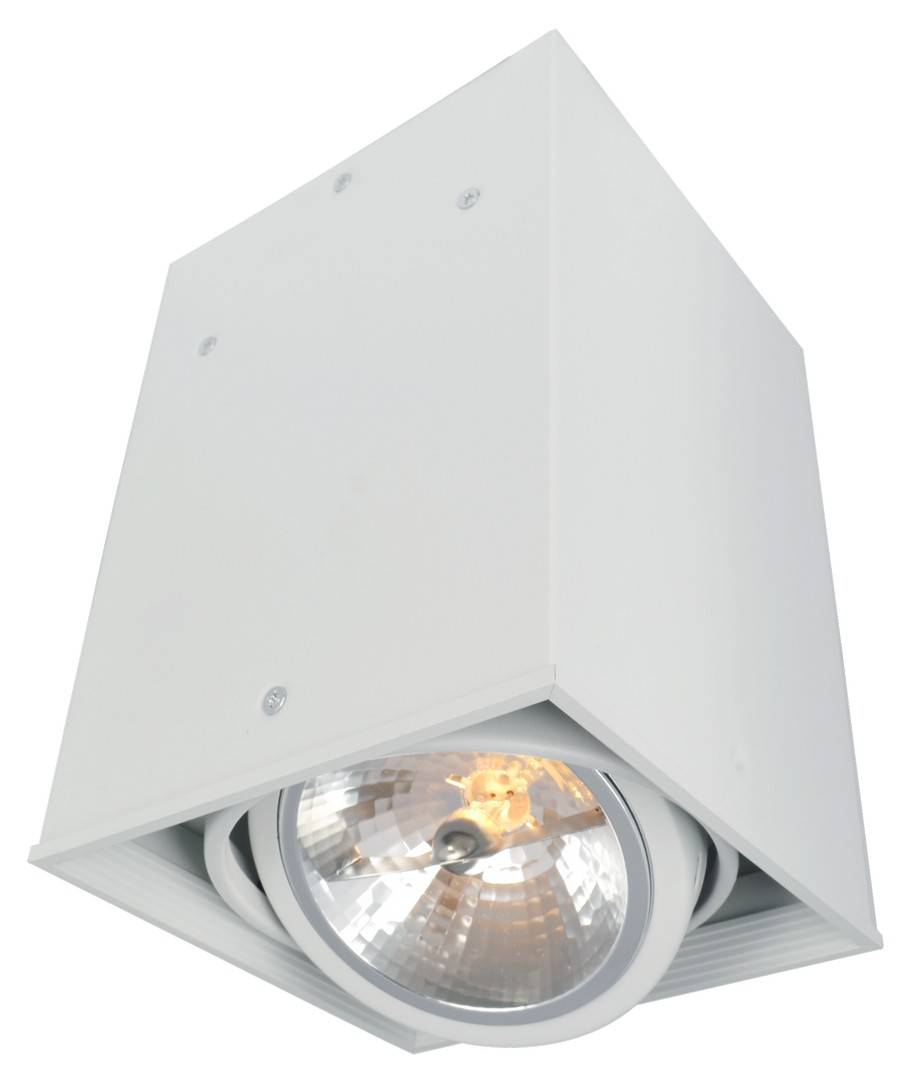 Светильник Arte Lamp A5936PL-1WH Cardani