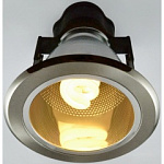 Светильник Arte Lamp A8044PL-1SS General